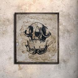 obraz kocia czaszka,obraz malowany,tusz i kawa - Obrazy - Wyposażenie wnętrz