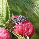 Pierścionki maliny,srebrne kwiaty,rubin,gałązki