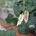 Kolczyki kolczyki,liście,eco