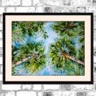 Obrazy akwarela,palmy,krajobraz,tropikalny