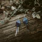 Kolczyki Kolczyki srebrne z sodalitem