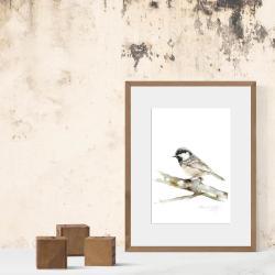 akwarela,ptaki,malarstwo,sztuka,obraz,wnętrze - Obrazy - Wyposażenie wnętrz