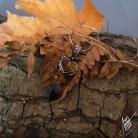 Wisiory aillilstudio,bursztynowy,jesienny,serce