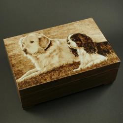 psy,pupile,szkatułka - Pudełka - Wyposażenie wnętrz