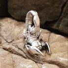 Wisiory zahario,skorpion.wisior,srebro,zodiak,bizuteria