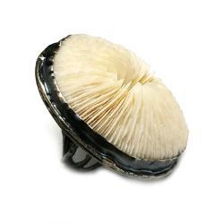 koral,grzybowieniec,mineralny,koralowiec,srebrny, - Pierścionki - Biżuteria